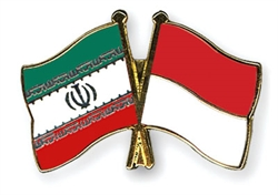 Iran, Indonesia Oil Ministers Discuss Enhanced Ties